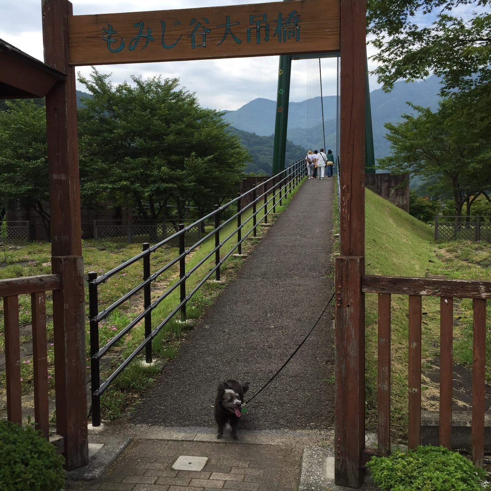 turibashi2.jpg